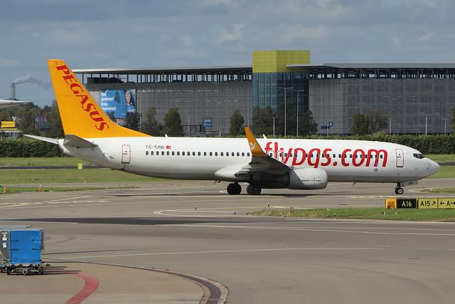 TC-CRB  -  Boeing 737-8AL (WL)  -  Pegasus Airlines  -  AMS/EHAM 18/8/19