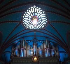 Basique Notre-Dame Montreal