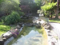 The swan and duck pond. Plaza  Guipuzcoa, San Sebastian , Donostia, Guipuzcoa,  Basque  Country, Spain.