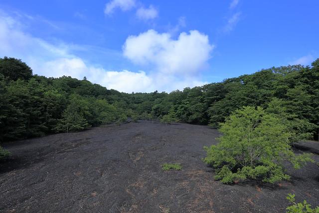 Mt.Fuji 2nd stage,Mizuketsuka park