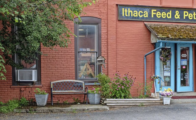 Ithaca Feed & Pet Store-HBM!