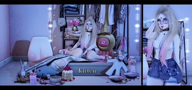 ❀ Lil'Kitten  ❀