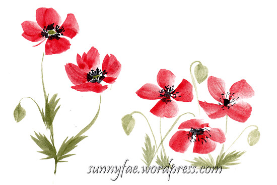 loose watercolour poppy