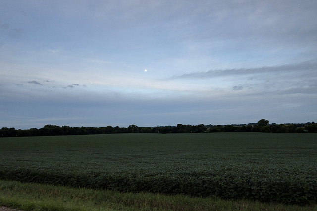 IMG_6553_A