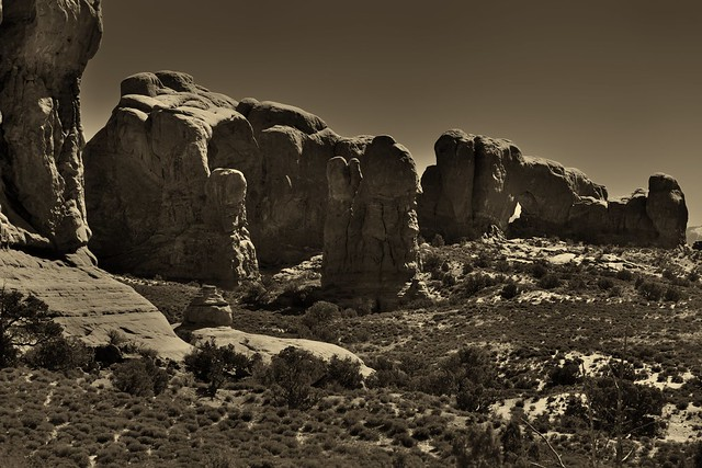 The Many Shapes of Rock Formations Across the Windows Section and Elephant Butte (Black & White, Arches National Park)