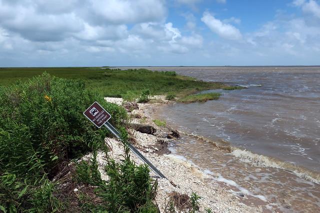 Texas - Anahuac National Wildlife Refuge: East Bay