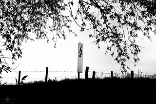 Six Fence Posts