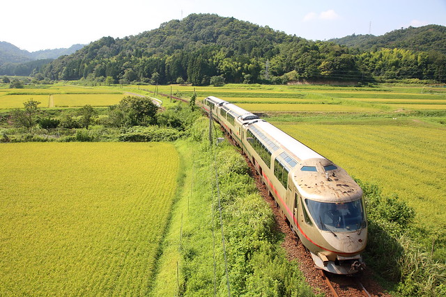 The rusty DMU is running through the rice fields