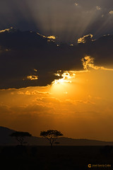 20190722 Tanzania-Serengueti (1743) R01