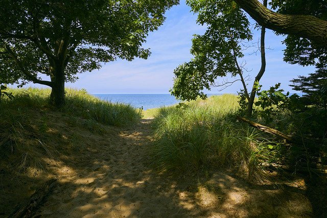 024393a  It's Always A Rush To See Lake Michigan After a Mile + Hike In Deep Woods And Dunes