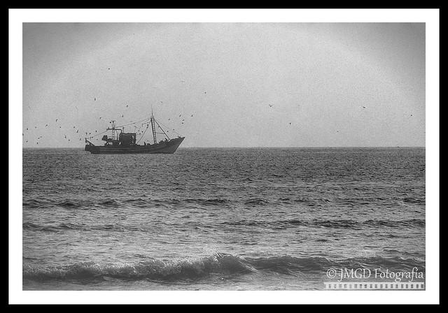 A ship in the sea