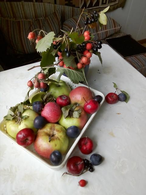 яблочный спас (1)