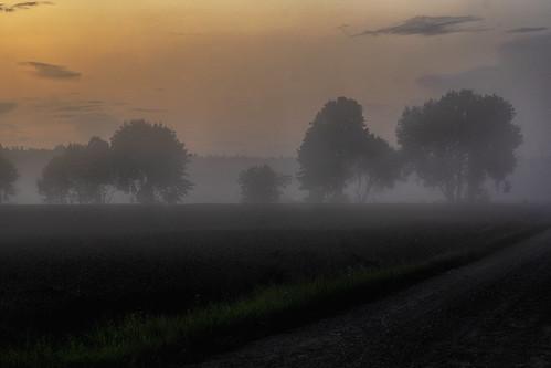 misty sunset 2