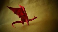 Simple dragon-shuki kato   135x240
