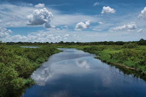 sonyalpha clouds florida green landscape landscapephotography madewithluminar manateecounty reflections scenic skylum sonyimages bradenton unitedstatesofamerica