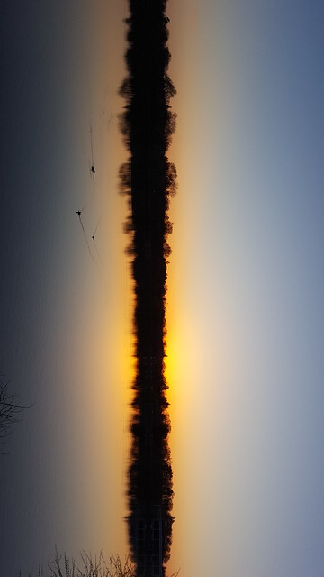 Flipped Sunset