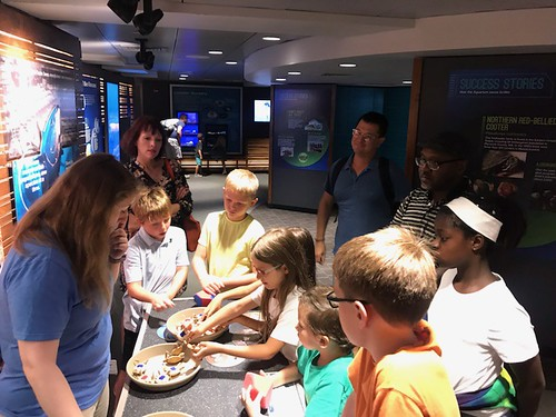 August 19, 2019 - 10:53am - Children & Families Trip to the Aquarium