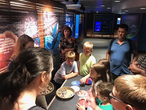 August 19, 2019 - 10:54am - Children & Families Trip to the Aquarium