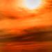 Beach Sunset 3-0 F LR 8-2-19 J381
