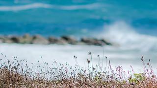 © Southbourne Cliffs, Dorset