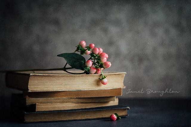 Books + Berries