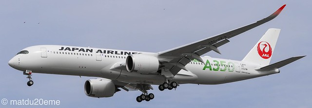 Airbus A350-900 / Japan Airlines (Airbus A350 green)