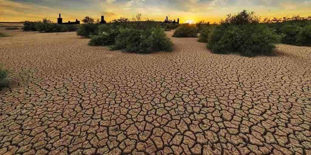 vagues-de-chaleur-europe-changement-climatique