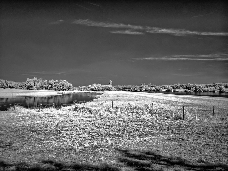 infra red-819_2724_easyHDR-black-and-white