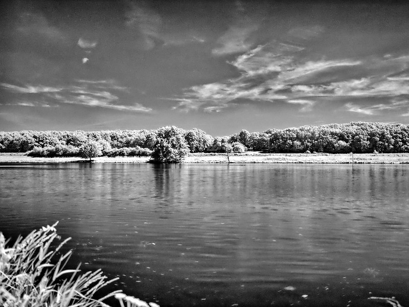 infra red-819_2730_easyHDR-black-and-white