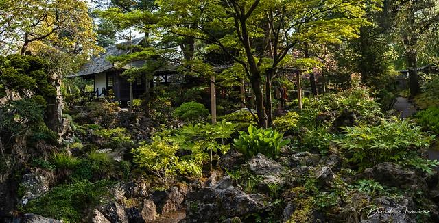 Japanese tea house in Japanese Garden, County Kildare, Ireland