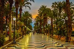 fc1806_Alicante_527.jpg