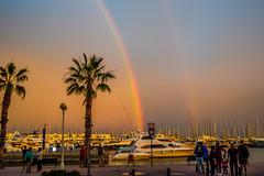 fc1806_Alicante_532.jpg