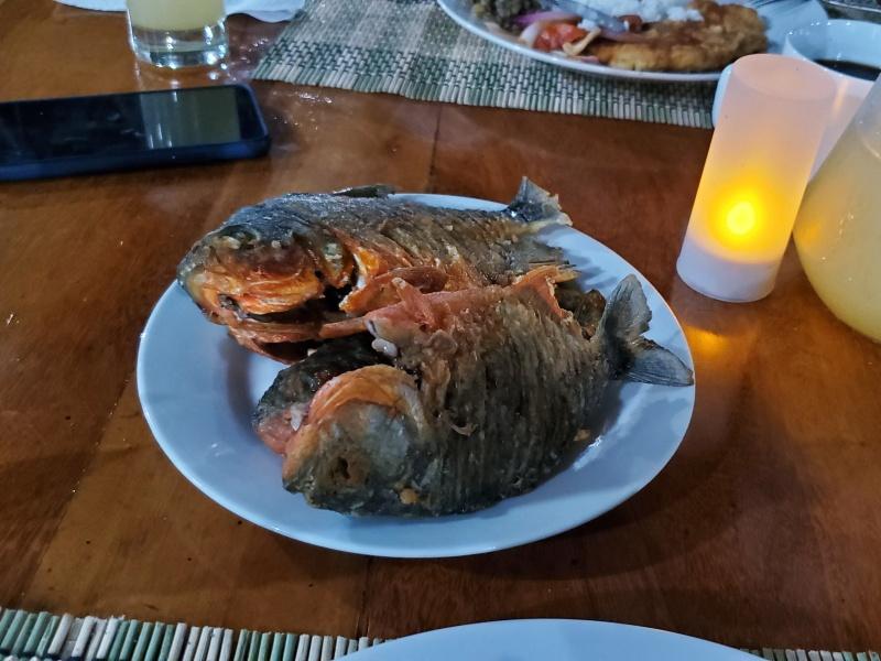 cooked piranhas