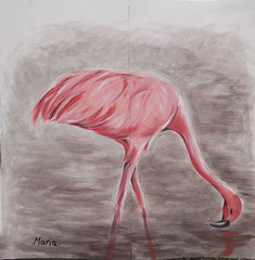 Flamingo graffiti