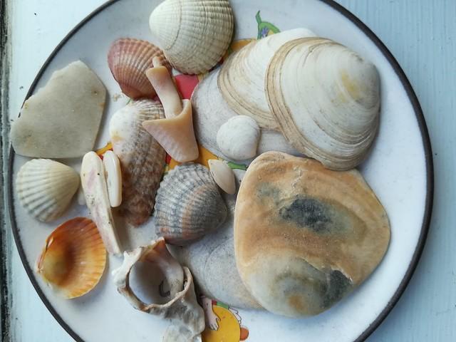 She sells sea shells on the seashore...!!!