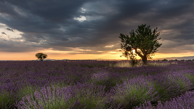 Magical light over Provence