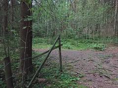Fence corner- Hovskogen