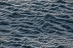 Ocean Pattern 0072
