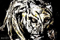 Driftwood Cat Face 0052