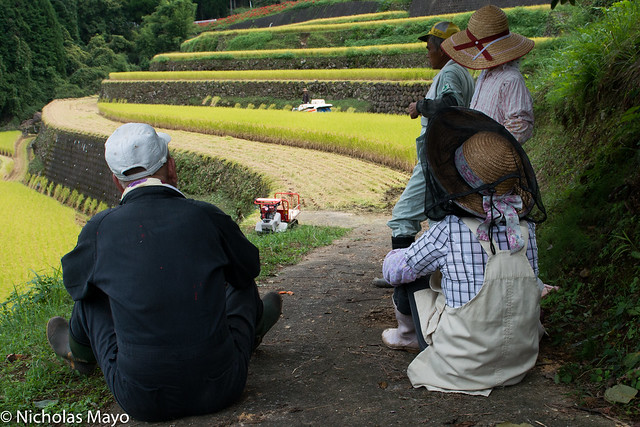 Farmers At Harvest Time