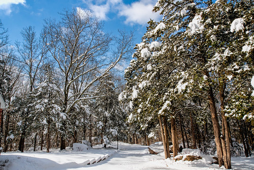 bobgundersen robertgundersen gundersen guilford ct conn connecticut country connecticutscenes scenes scene snow snowy nikon nikoncamera nikond600 d600 interesting image outside outdoor landscape cold tree road weather winter white exterior photo picture places flickr frozen newengland nature m nikkor ©bobgundersen