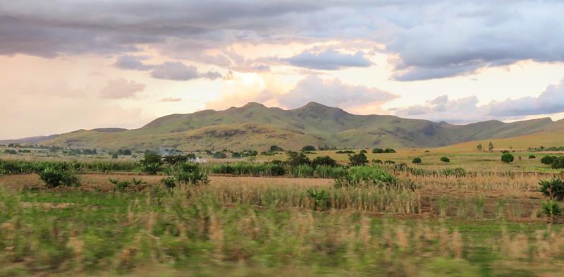 Madagascar-1156