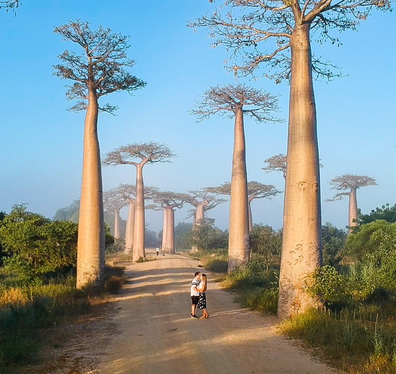 Madagascar-764