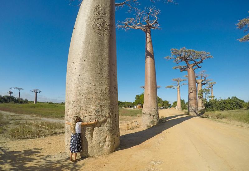 Madagascar-671