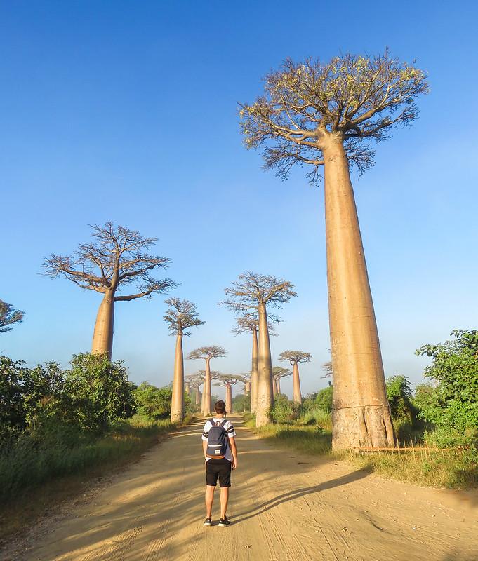 Madagascar-638