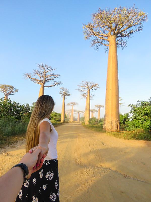 Madagascar-628