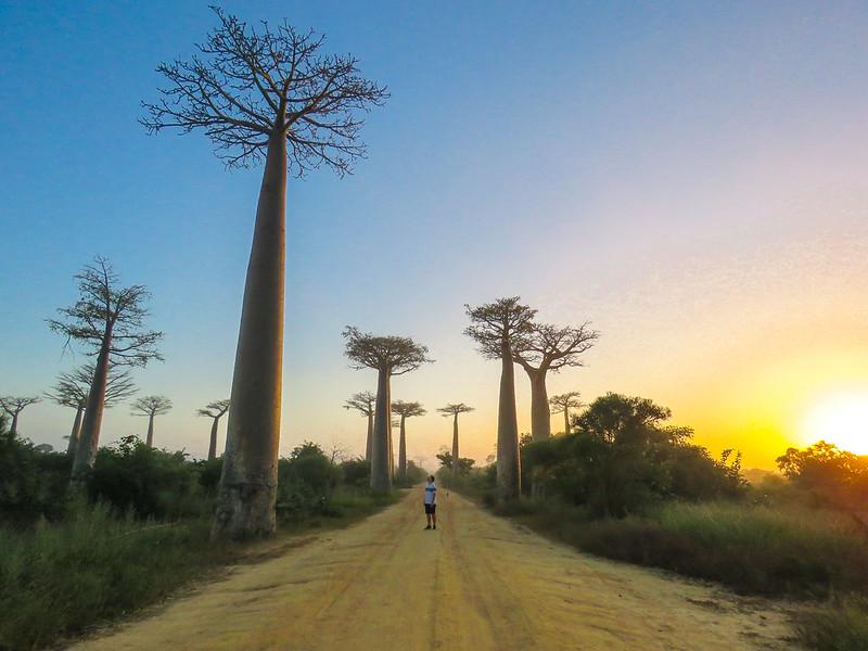 Madagascar-604