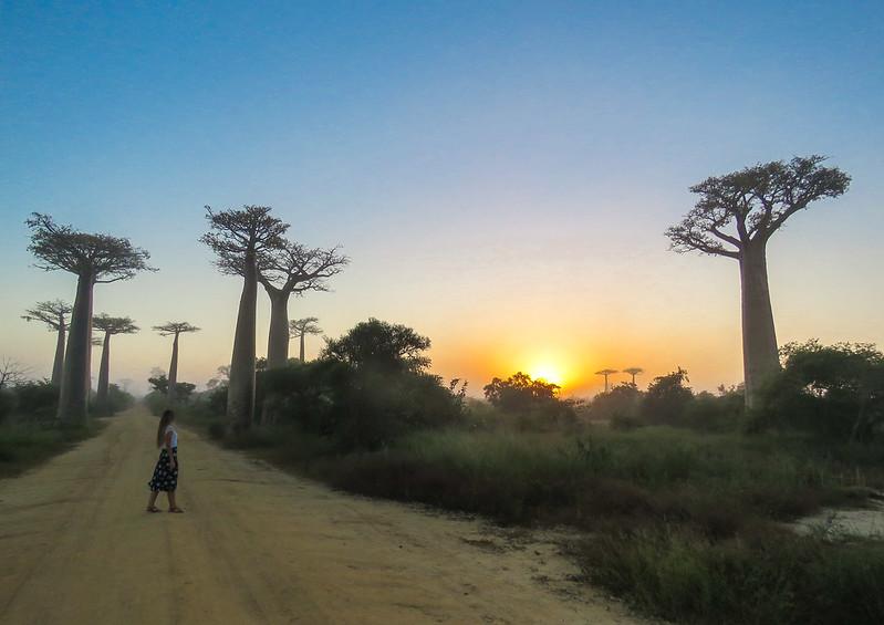 Madagascar-587