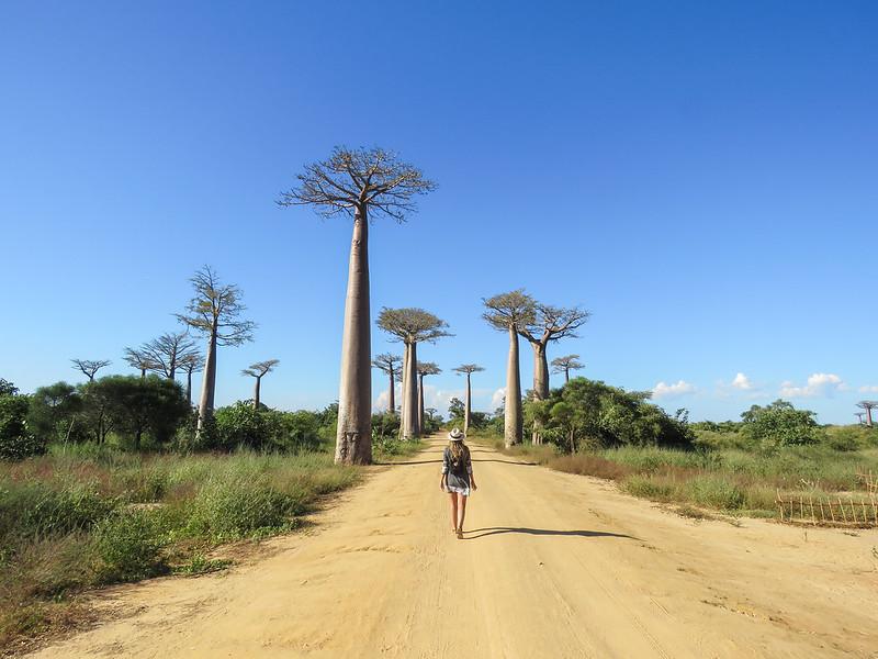 Madagascar-438