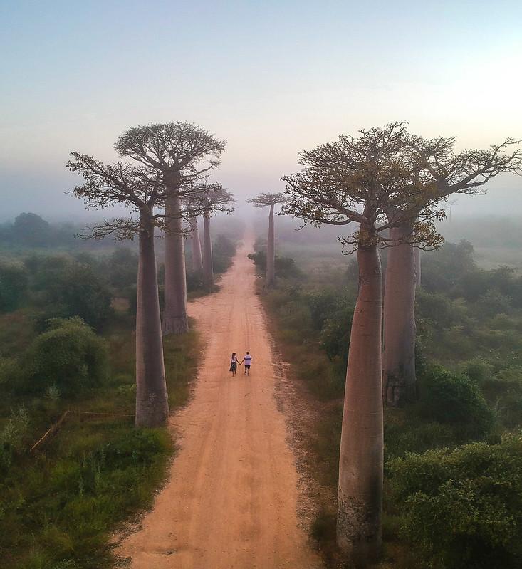 Madagascar-694